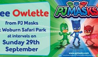 Meet Owlette from PJ Masks this Sunday at Woburn Safari Park