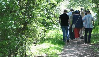 Walking in the Forest of Marston Vale