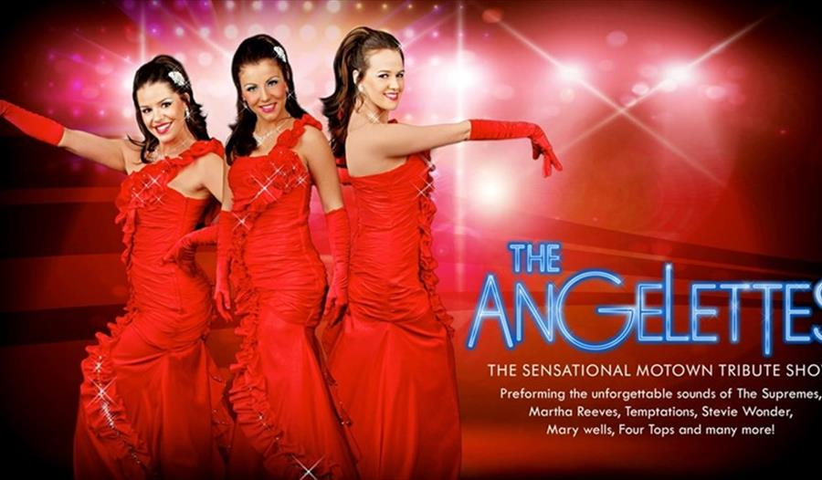 See The Angelettes performing at Woburn Safari Park